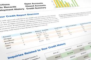 Credit Report Details